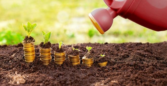 Fondul Național de Garantare a Creditelor pentru IMM (FNGCIMM)