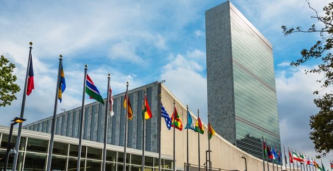 Organizația Națiunilor Unite (ONU)