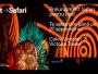 ART SAFARI 2020, încă un pas spre normalitate (și nu numai)