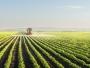 Secretar de stat: România şi-a propus să ajungă la 500.000 hectare cultivate ecologic, în 2021