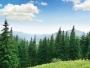 ANANP: Program adresat voluntarilor care doresc să susţină activităţile de conservare a naturii şi educaţie de mediu