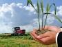 România poate acorda fermierilor un avans de până la 70% din plăţile directe în această toamnă