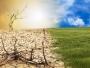 Adrian Oros: Se vor despăgubi cu sume considerabile pierderile cauzate de secetă