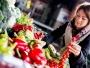 Studiu: Europenii sunt dispuşi să îşi schimbe obiceiurile alimentare pentru a proteja mediul
