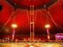 Circul Metropolitan Bucureşti se redeschide astăzi