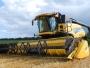 Ministrul Agriculturii: Aş vrea să avem până la finele anului o Lege corectă a arendei
