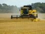 AFIR: 105 milioane de euro, fonduri disponibile pentru infrastructura de acces agricolă