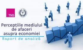 """Economia, sub """"lupa"""" oamenilor de afaceri"""