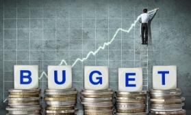 Raport privind proiectele de buget pe anul 2017 (I)