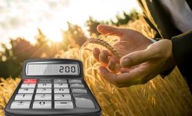 Particularități privind organizarea contabilității în agricultură
