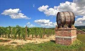 Dezvoltarea conceptului de wine tourism printr-un proiect comun România-Republica Moldova