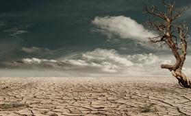 Noul Atlas mondial al deșertificării: Peste 75% din suprafața uscatului este deja degradată și peste 90% s-ar putea degrada până în 2050