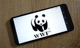 WWF: Cetățenii UE consumă 20% din resursele naturale ale planetei, deși reprezintă doar 7% din populația lumii