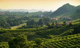 UNESCO: 29 de situri, printre care colinele Prosecco din Italia şi Babilonul, în Patrimoniul Mondial