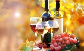 Vinul de Cotnari, printre produsele europene cu indicații geografice protejate în China