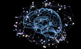 Cea mai detaliată hartă 3D a creierului a fost publicată de Google