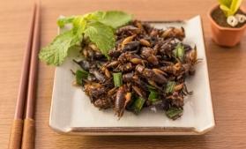Autoritatea europeană în domeniul alimentar şi-a dat acordul pentru consumul de insecte