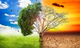 BEI: Oamenii sunt dispuşi să renunţe la călătoriile cu avionul pentru a combate schimbările climatice