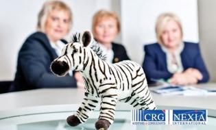 CRG Nexia EXPERT – Premiul special al anului 2015 în Topul local al celor mai bune societăți membre CECCAR, filiala Constanța