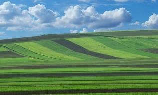Măsuri pentru intabularea gratuită a terenurilor agricole