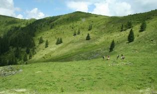 Descoperire arheologică în Maramureș