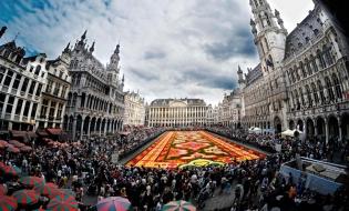 Bruxelles: Ședința Consiliului de administrație și Adunarea Generală a FIDEF