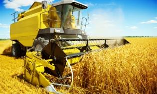 Studiu: Agricultura a contribuit la încălzirea globală aproape la fel de mult ca defrişările