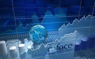 Coface – Raport privind comerțul cu ridicata în domeniul materialelor de construcții: tendința ratei insolvenței a firmelor din sector este în scădere în ultimii trei ani