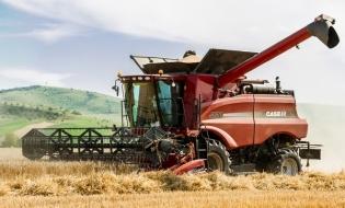 Anul trecut, valoarea producției ramurii agricole a scăzut cu 15,4%