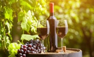 Franța: Vremea nefavorabilă va duce la diminuarea producției de vin la cel mai scăzut nivel din ultimele decenii