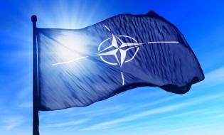 România îşi propune afilierea la NATO a primului Centru de Excelenţă pentru Protecţia Mediului