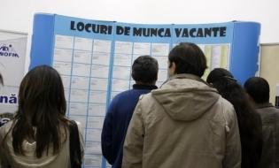 Peste 19.100 de persoane angajate prin intermediul ANOFM în prima lună a anului