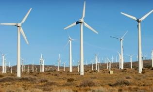 Secretar de stat: România are un potenţial eolian offshore uriaş, de peste 70.000 de MW