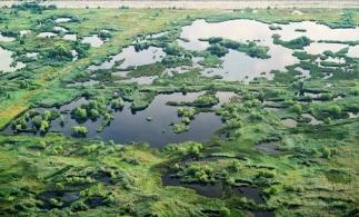 Parcul Natural Văcărești, declarat arie naturală protejată