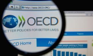 OECD: Produsele contrafăcute reprezintă 3,3% din comerţul global şi continuă să crească