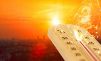 Directorul general al ANM: Anul 2019, cel mai călduros de când se fac măsurători în România