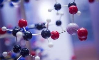 Cercetătorii UBB împreună cu elevi de liceu au transpus vibraţiile moleculare în muzică