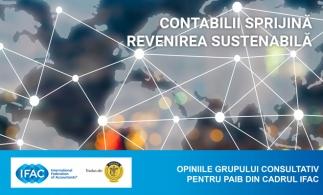 Document IFAC: Contabilii sprijină revenirea sustenabilă