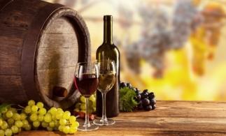 Gerul ar putea reduce cu o treime producția de vin a Franței