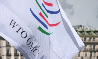 OMC estimează că se apropie o criză economică globală mai gravă decât în 2008