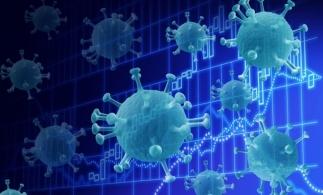 Ministrul Muncii: Epidemia este sub control acum, dar criza nu a trecut. Măsurile Guvernului