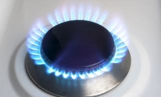 Ministrul Economiei: Preţul gazelor pentru populaţie ar trebui să scadă cu 10%-15%, altfel Guvernul va interveni
