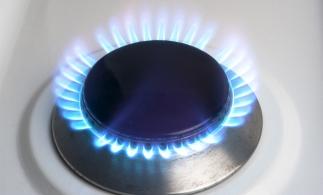 Virgil Popescu: Preţul la gaze, în urma liberalizării, va fi mai mic decât preţul pe care populaţia îl plăteşte acum
