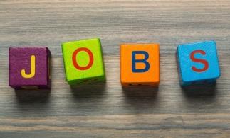 eJobs: Numărul românilor care caută joburi în străinătate este în scădere