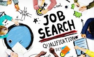 BestJobs: Aproape 100.000 de căutări pentru joburi care pot fi desfășurate de acasă în luna august