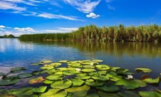 Delta Dunării, a cincea minune naturală a lumii, potrivit Instagram