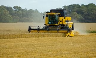Agricultura va avea cea mai mare scădere a valorii adăugate în PIB din ultimii cinci ani