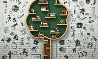 MEC: Strategia pentru digitalizarea educaţiei din România trebuie să devină un proiect de ţară