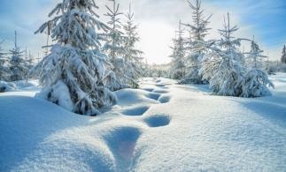 Florinela Georgescu (ANM): Iarna viitoare va fi una normală, cu posibile episoade de viscol şi ger