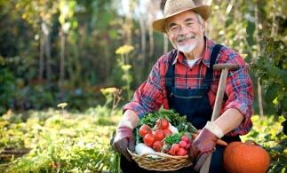 Ministrul Agriculturii: 40% din fermele din România sunt gospodăriile bunicilor, care nu vor rezista pe piaţă dacă nu se asociază